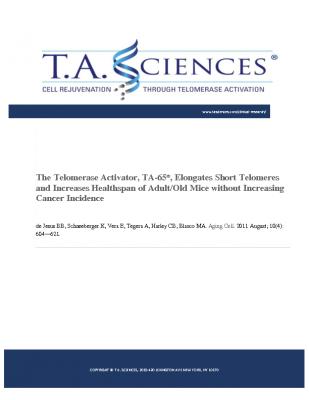 TA-65 Elongates Short Telomeres